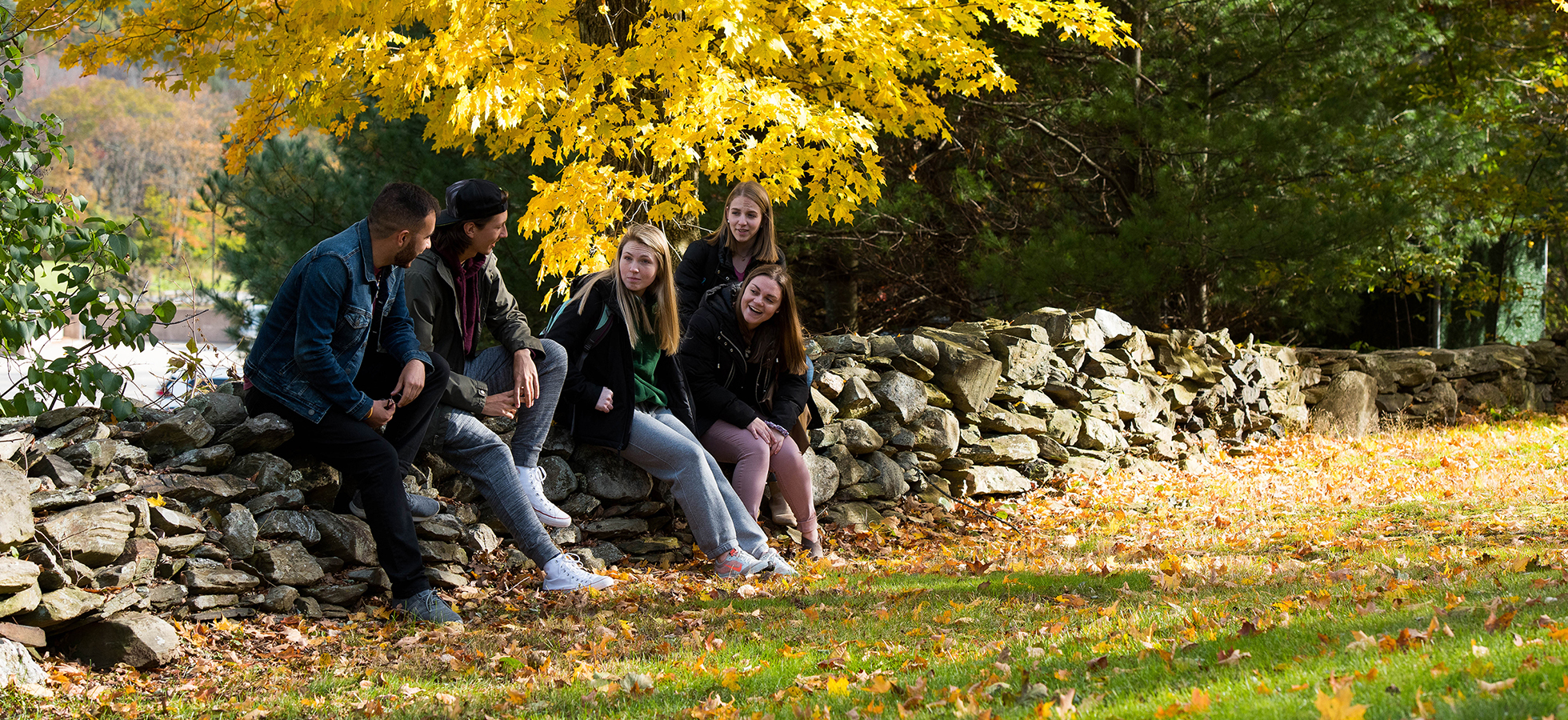 Assumption students surrounded by yellow foliage sitting on a rock wall on campus in Worcester, Massachusetts..